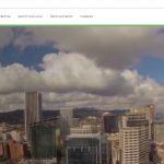 Screenshot of Linguava's website.